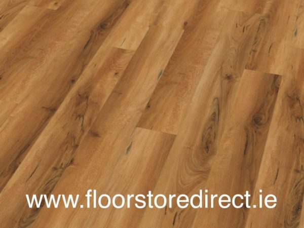 lignum canadian maple gloss small