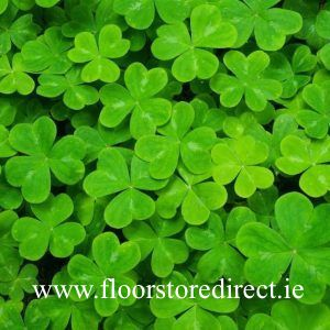 st patricks week sale