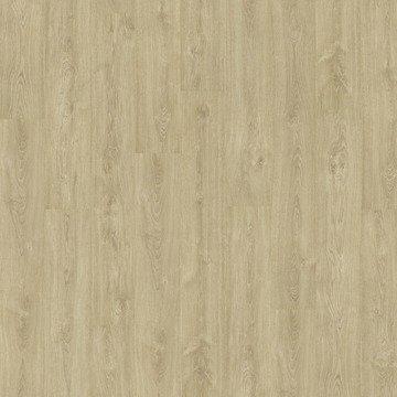 Etude22 Caffelatte Oak